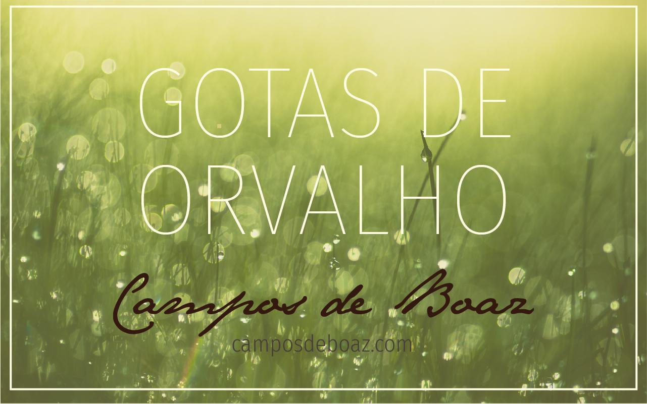 Gotas de Orvalho - David Wilkerson (150)